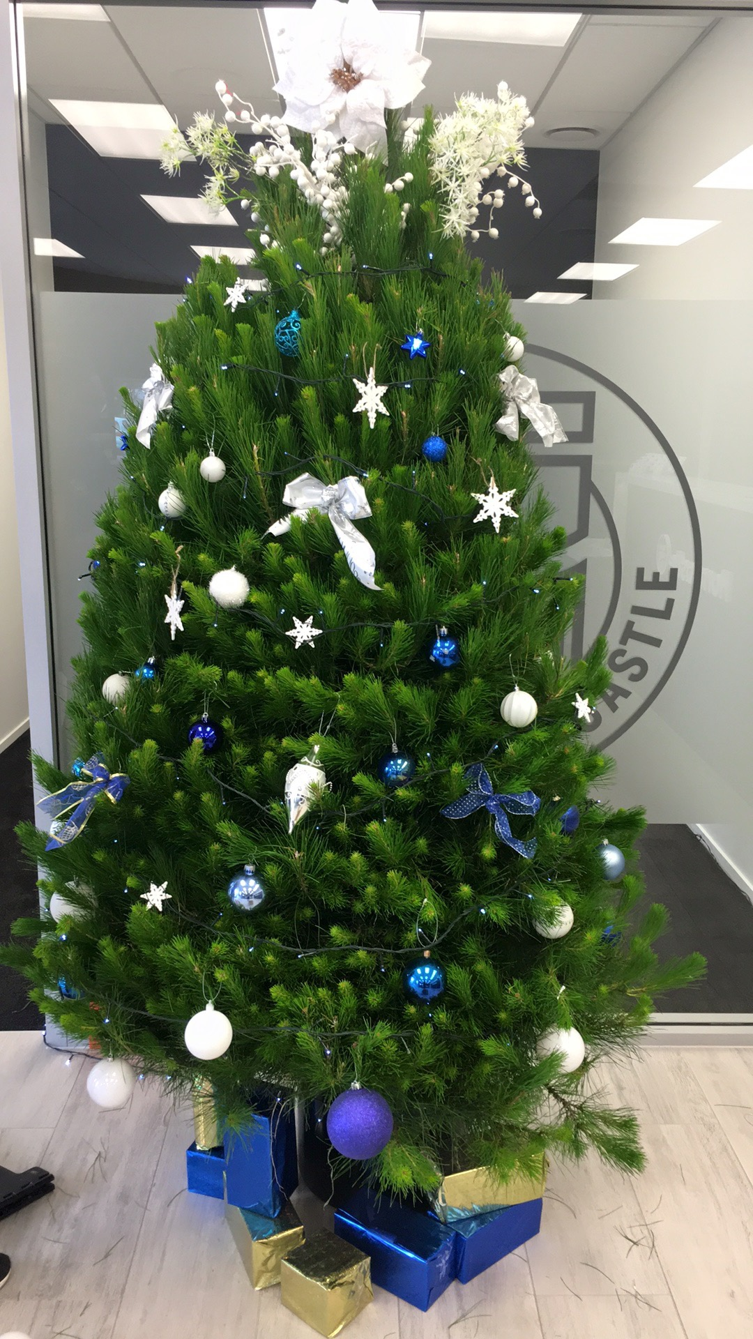 Christmas_Tree_Blue_and_Silver