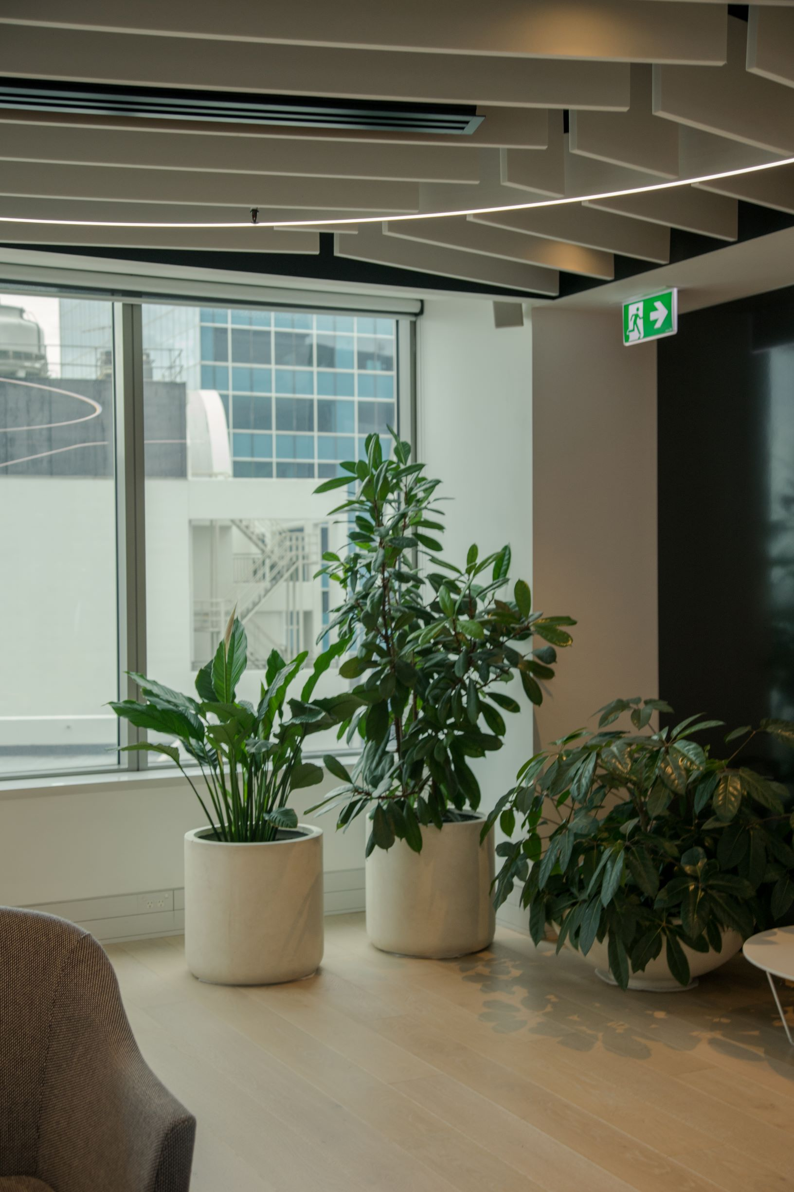 plant grouping in office