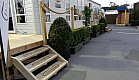 Buxus Ball and Trough on The Street - Auckland Home Show 2018