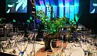 Native ferns used as centerpieces for the NZ Variety of Chef charity event