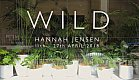 Hannah Jensen's WILD exhibition at the Allpress Gallery