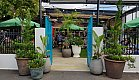 Lush and tropical entrance to a bar in Kingsland