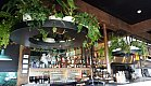 Modern and Lush is what comes to mind with these beautiful circular shelves spilling trailing plants over the bar area